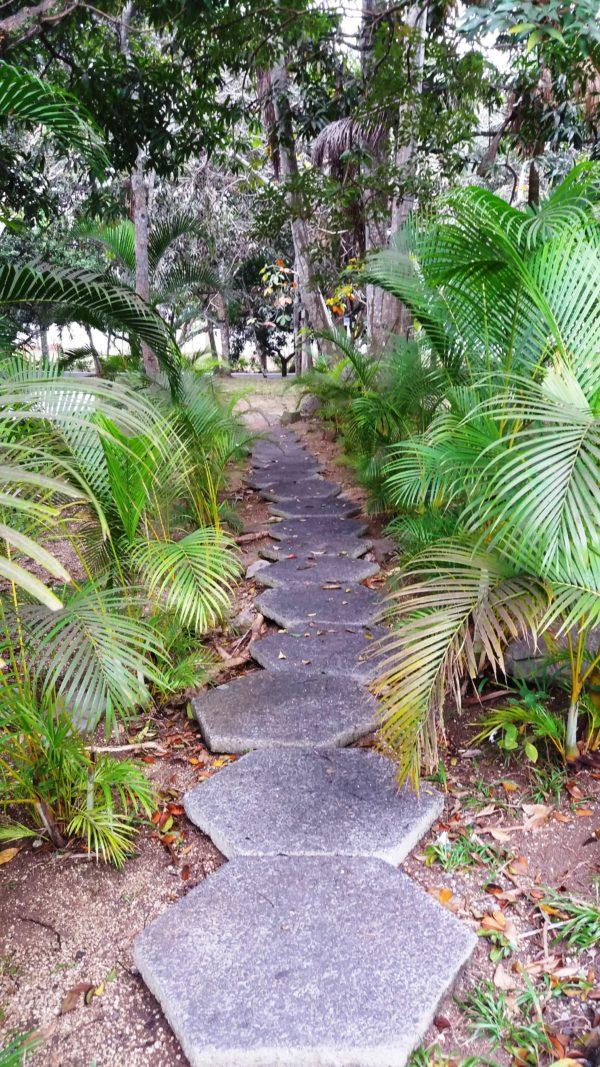 градината на Финка Вихия